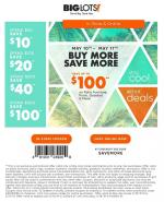 Big Lots Ad May 10 17 2019
