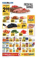 Food Lion Weekly Ad Sep 18 2019